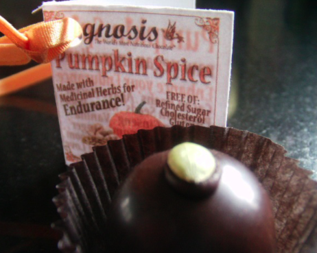 Post image for Pumpkin Spice Truffles from Gnosis