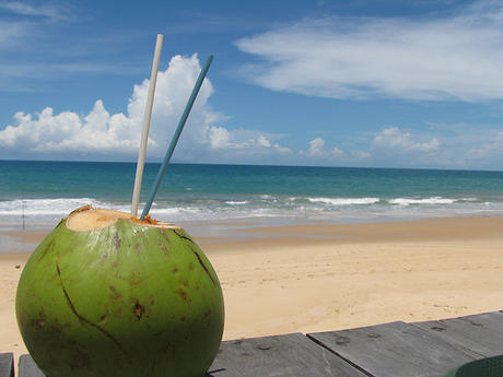 Post image for The Power of Coconut Water